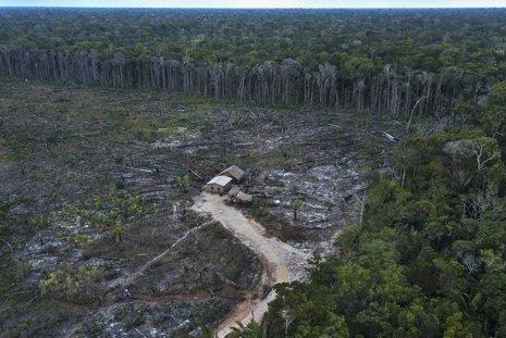 Estrada que liga Manaus a resto do país ameaça abrir uma Alemanha na mata